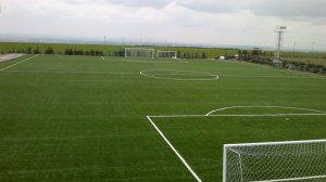 Artificial turf of soccer field